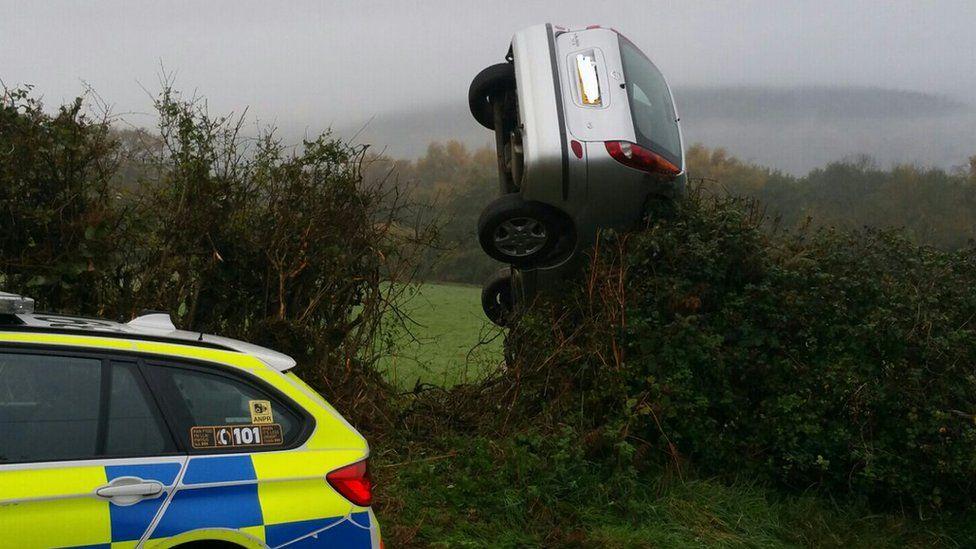 Car in hedge