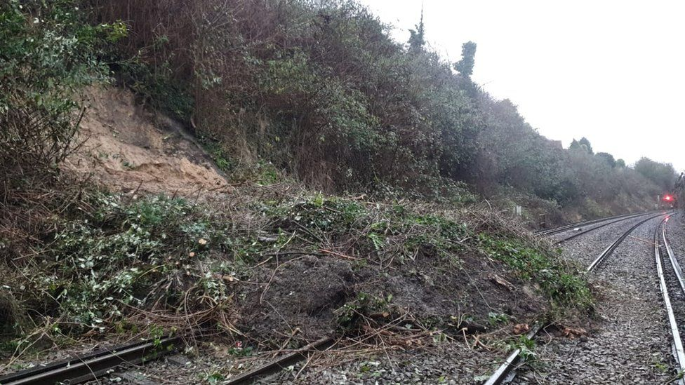 Fallen tree and landslip at Halling