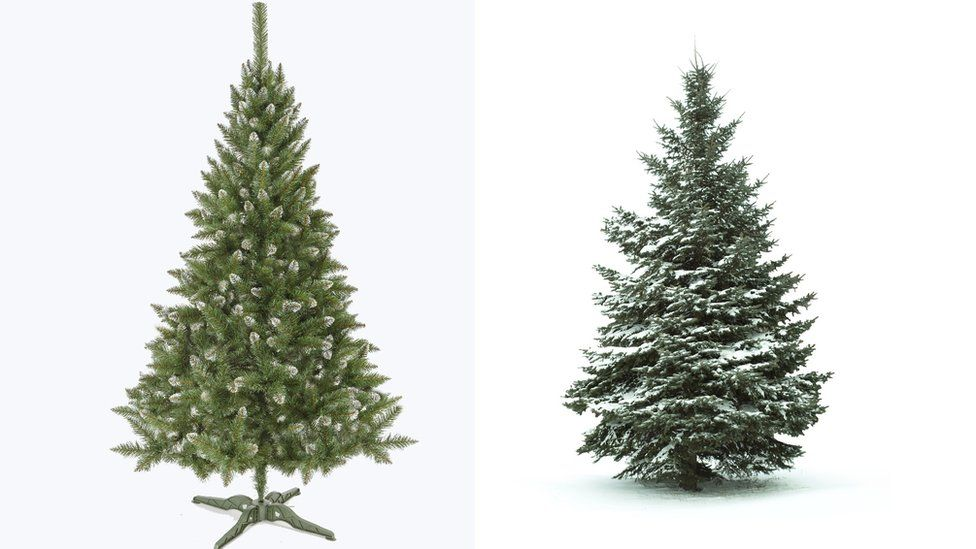 An artificial and a real Christmas tree