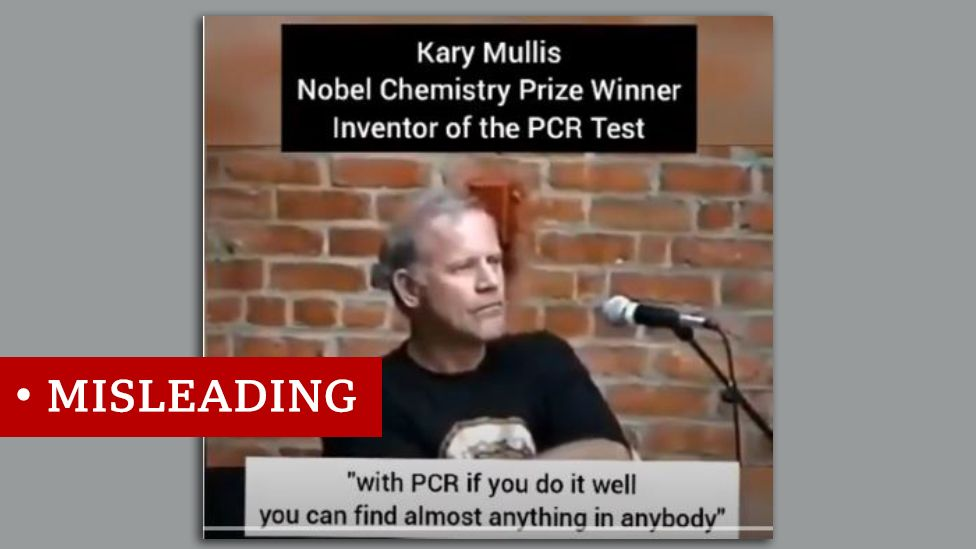 Screenshot of PCR inventor Kary Mullis