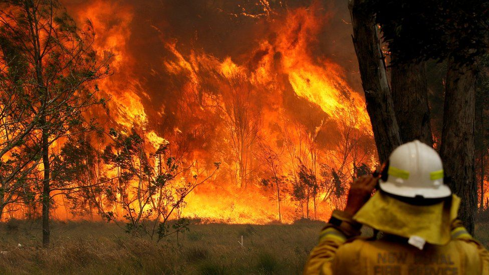 A NSW firefighter looks at flames raging in Old Bar
