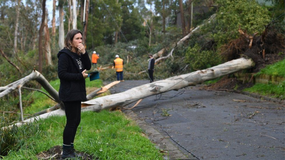 Local residents assess the damage along Kaola Street in Belgrave, Melbourne, Victoria, Australia, 28 August 2020