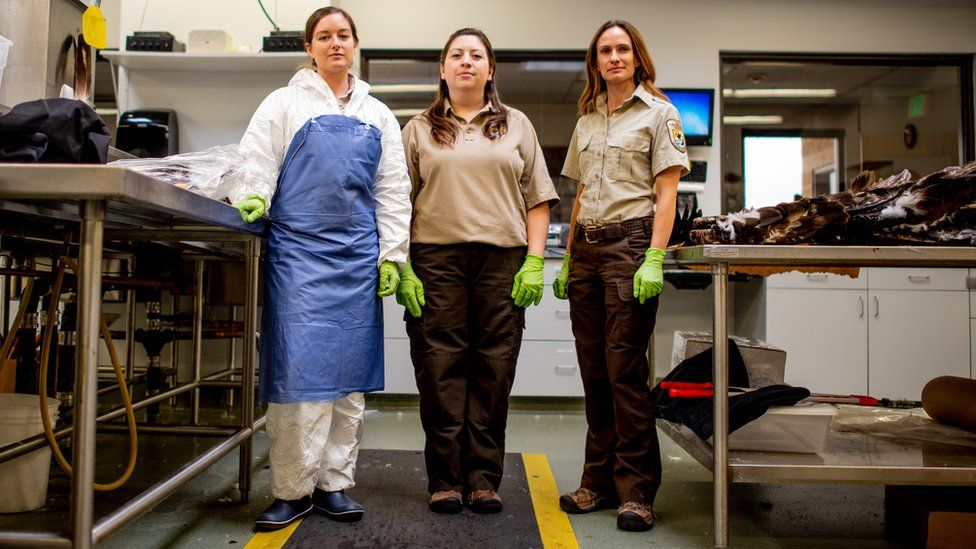 Laura Mallory, Liza Roman and Sarah Metzer wear bright gloves as they stand in the laboratory