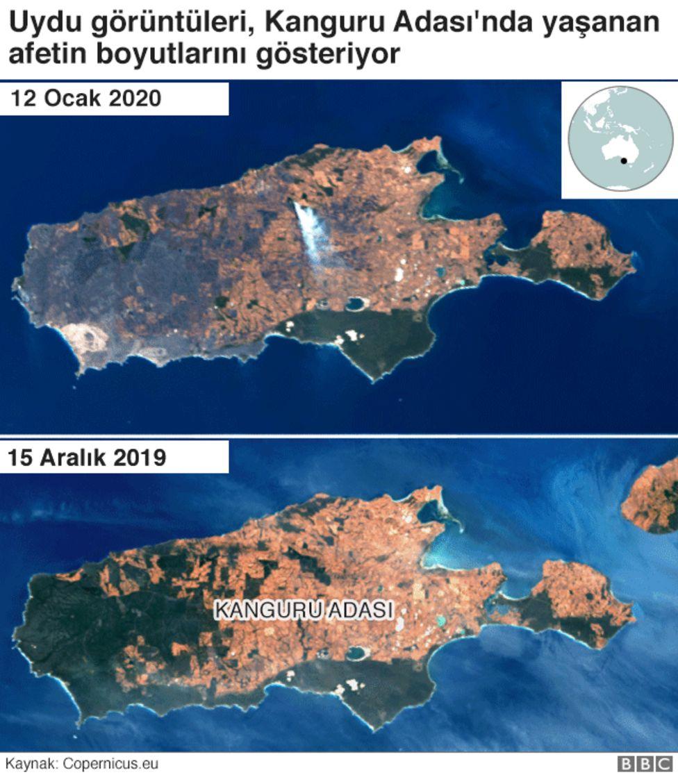Kanguru adası uydu görüntüleri