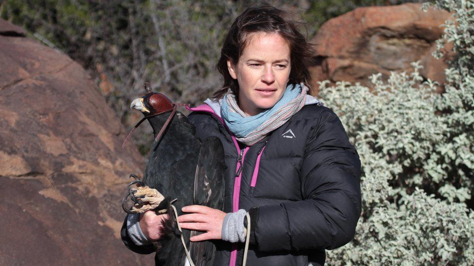 Dr Megan Murgatroyd, FitzPatrick Institute of African Ornithology
