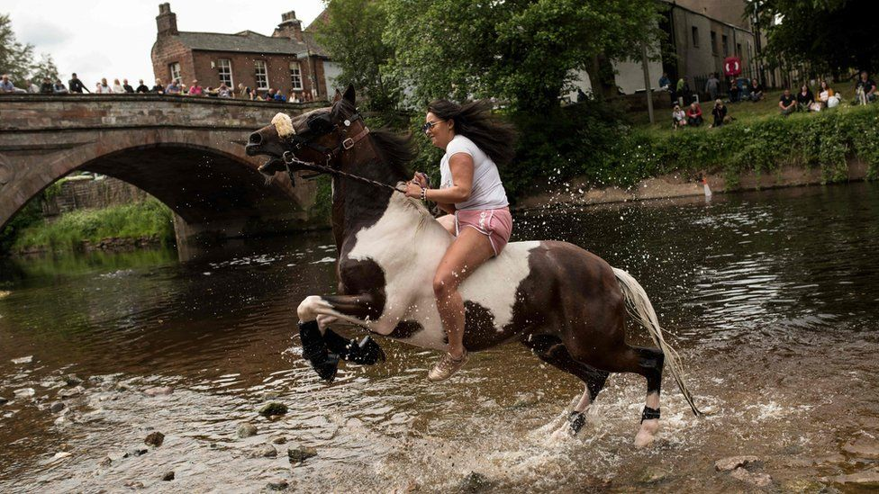 A horse rears up as it is washed in the River Eden on the second day of the Appleby Horse Fair