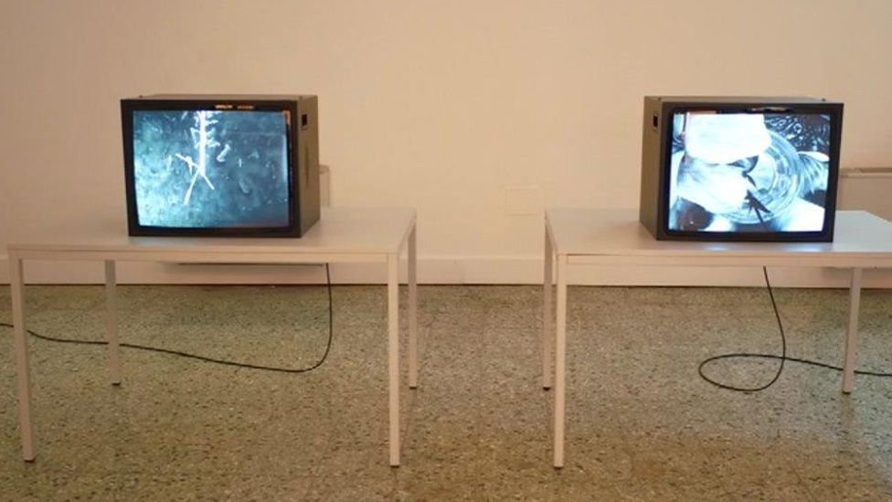 James Richards's Venice Biennale exhibit
