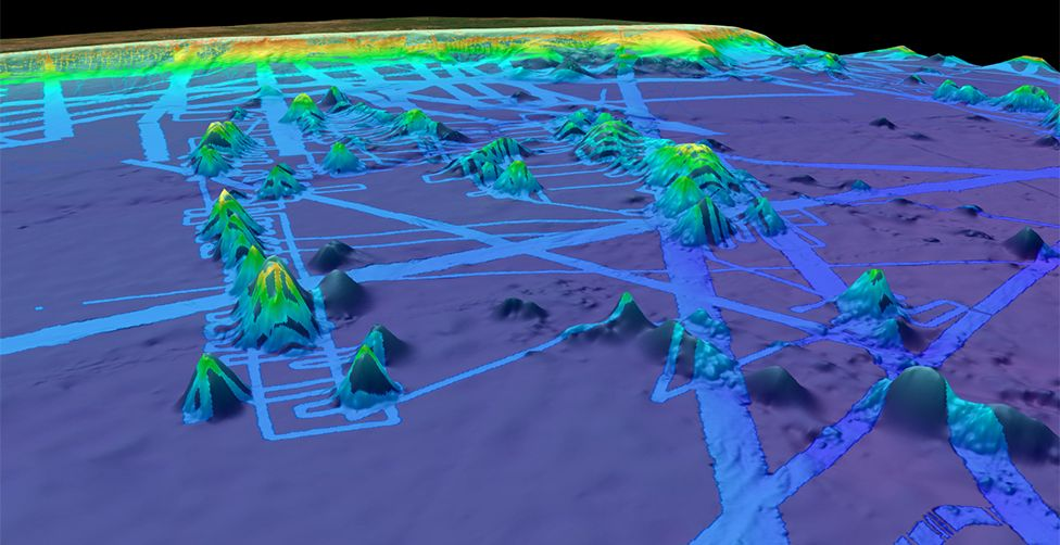 Seamounts off Brazil