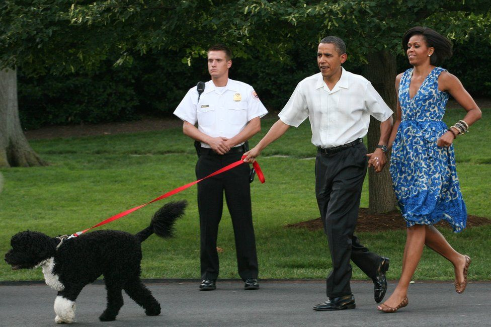 President Barack Obama and first lady Michelle Obama walk their dog Bo outside the White House