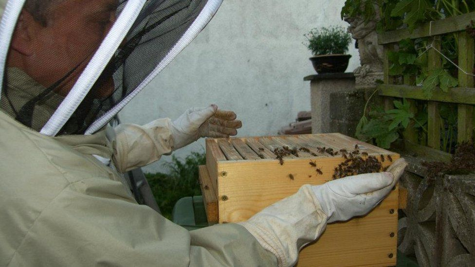 Chris Hickman with his hive in Tywyn