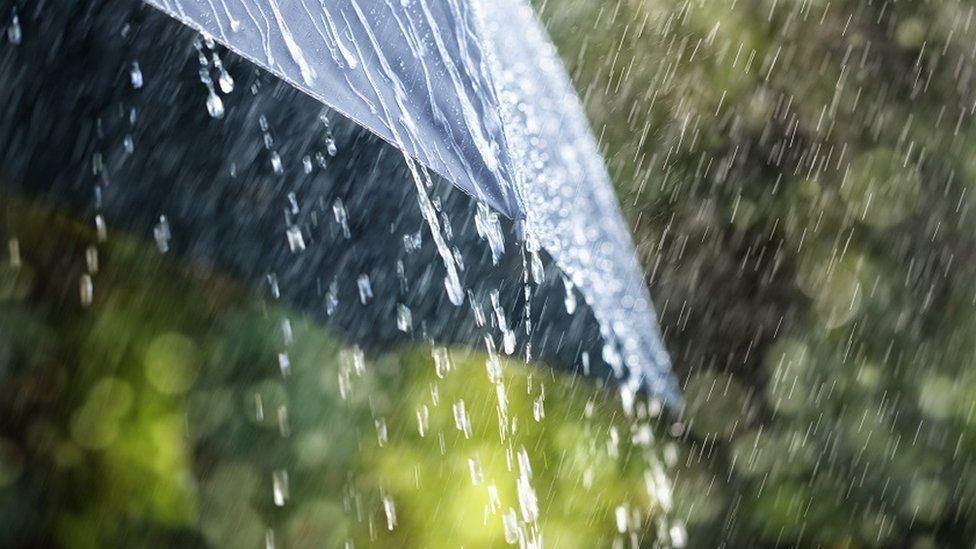 Rain on an umbrella