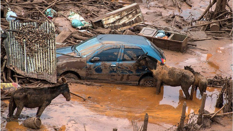 The Samarco dam disaster
