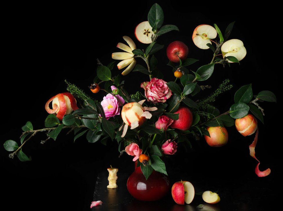 Still Life of roses and Pink Lady apples