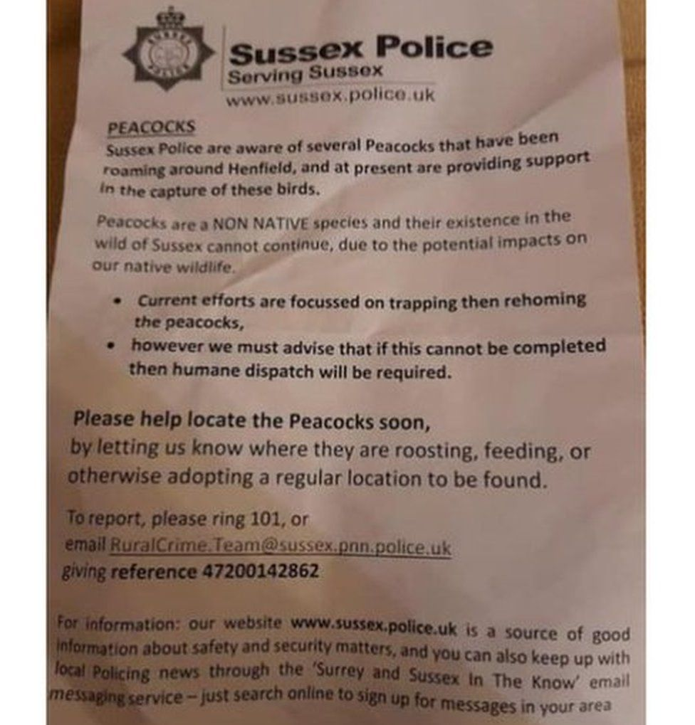 The police notice