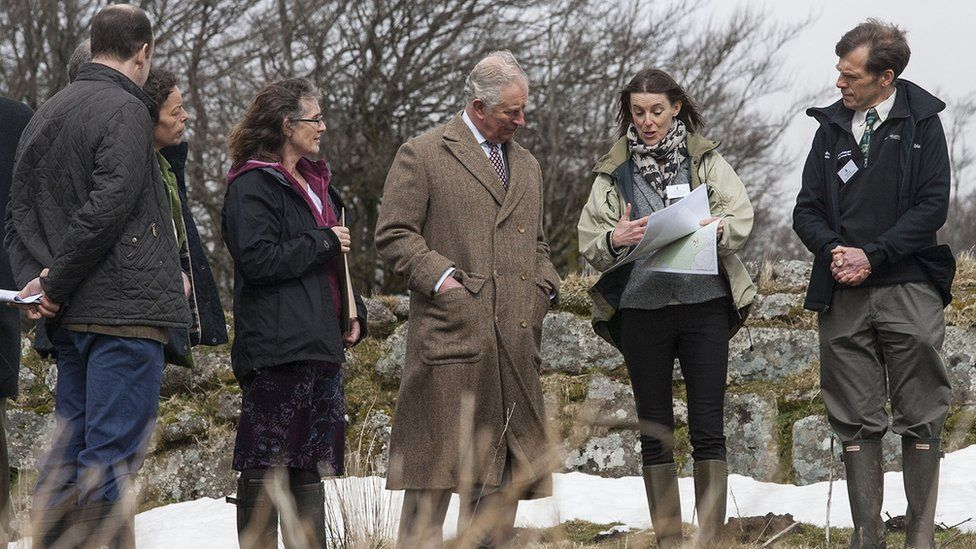 Prince Charles Curlew Recovery Partnership