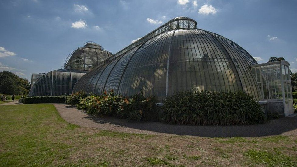 Palm House at Kew Gardens in London