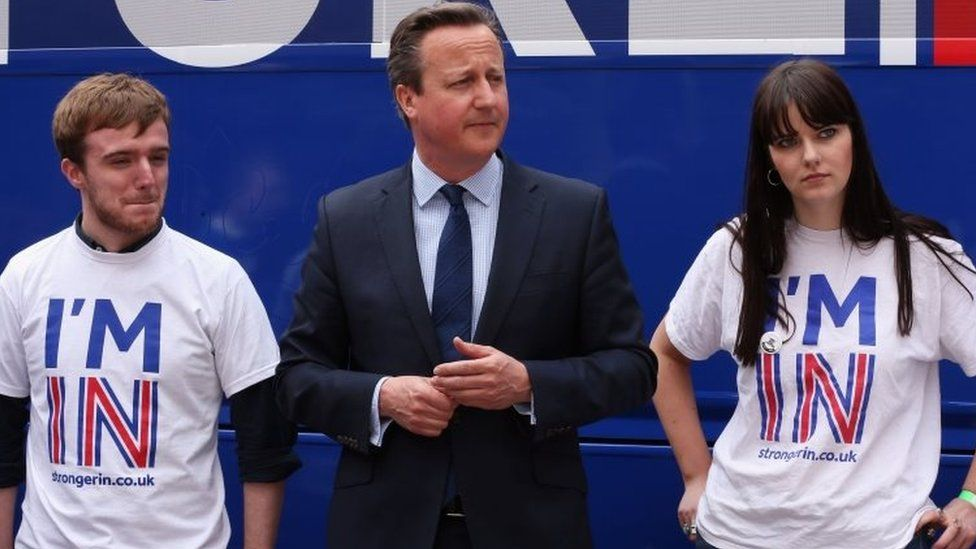 David Cameron with supporters of the In campaign