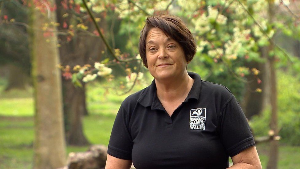 Rachel Sharp, chief executive of Wildlife Trusts Wales