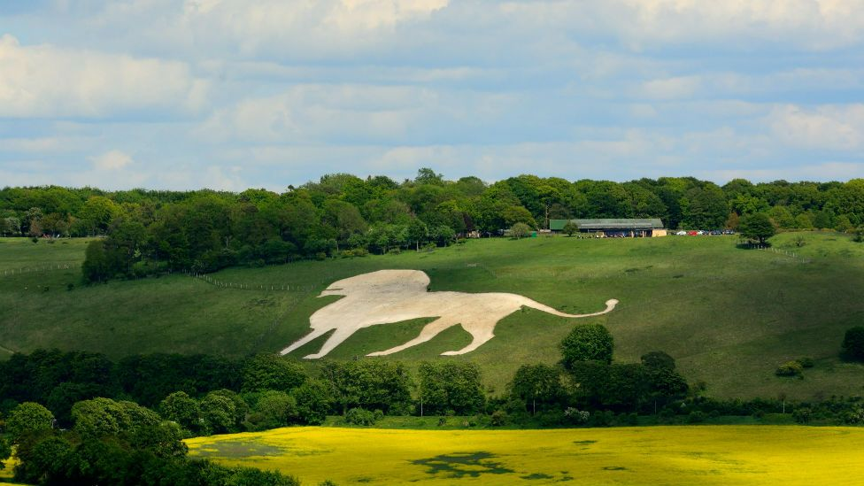 Whipsnade white lion