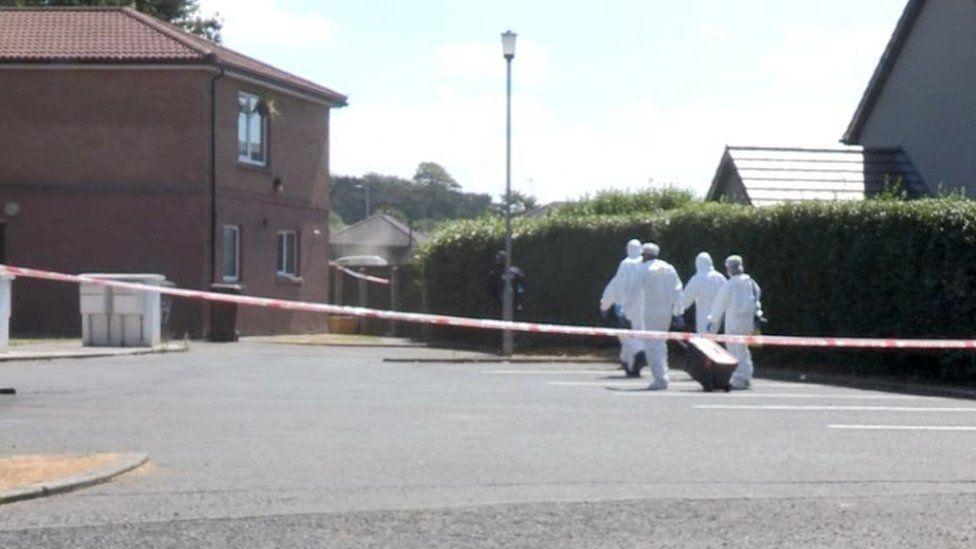 Forensic investigators examined the scene of the murder in Banbridge