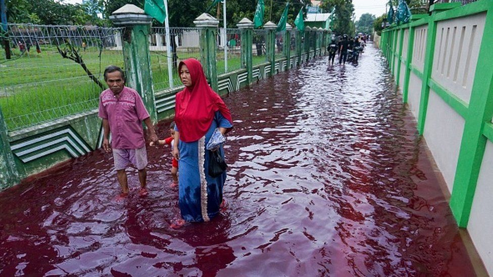 Residents wade through floodwaters dyed red from the waste of a batik factory, a traditional textile product, in Pekalongan, central Java