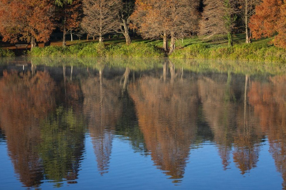 The brown leaves of winter trees are reflected in the waters of the Emmarentia Dam Reservoir in Johannesburg, South Africa, on 30 April.