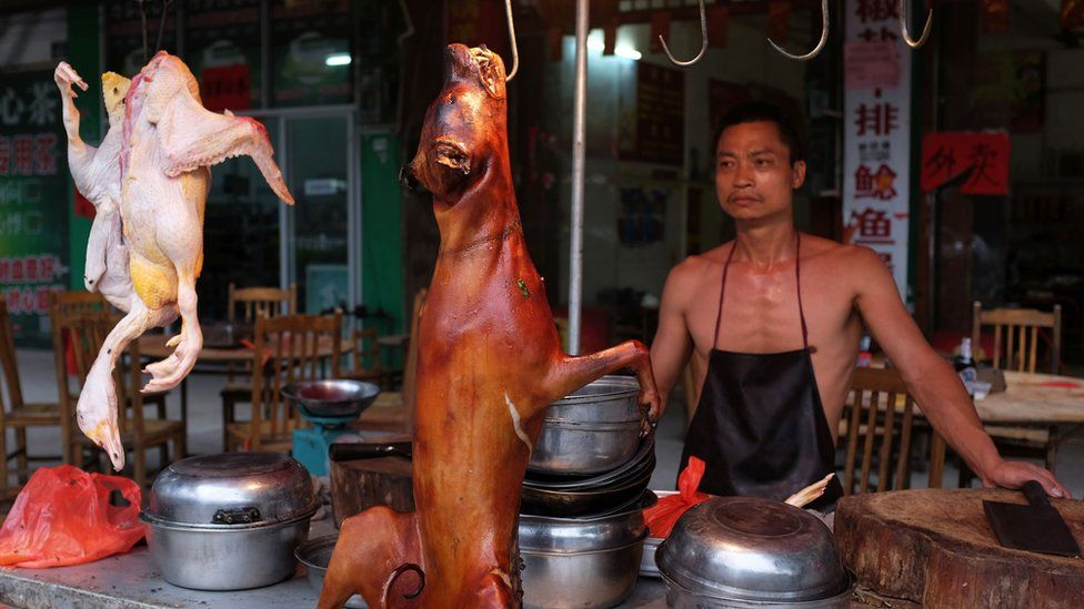 Dog meat on sale at the 2016 festival
