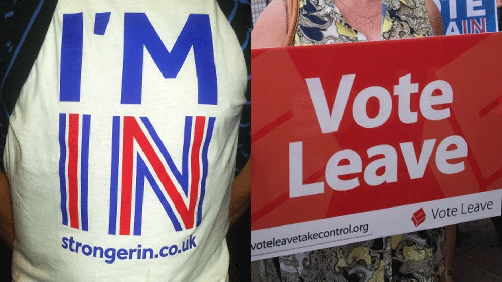 Remain and Leave campaigners