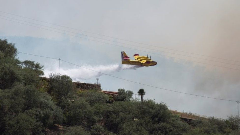 A plane dumps water on a wildfire in Gran Canaria
