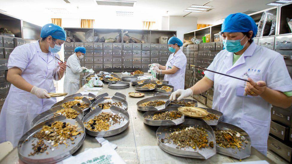 Workers preparing traditional medicine
