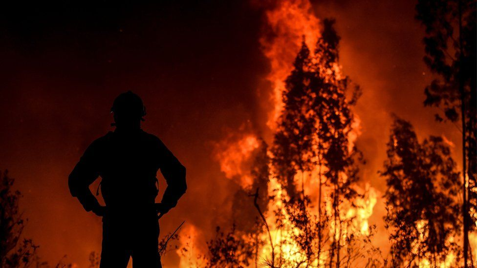 A firefighter monitors the progression of a wildfire at Amendoa in Macao, central Portugal on 21 July 2019