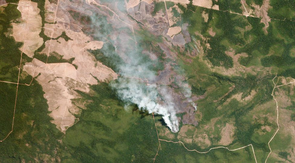 The Amazon in Brazil is on fire - how bad is it?