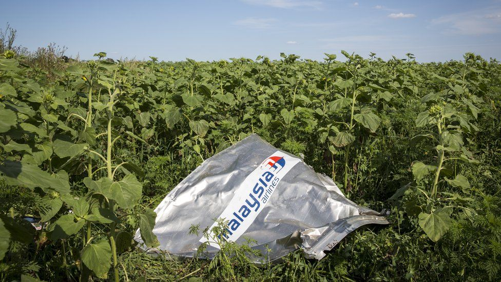 A piece of wreckage from Malaysia Airlines flight MH17 lies in a sunflower field in Rassipnoye, Ukraine (20 July 2014)