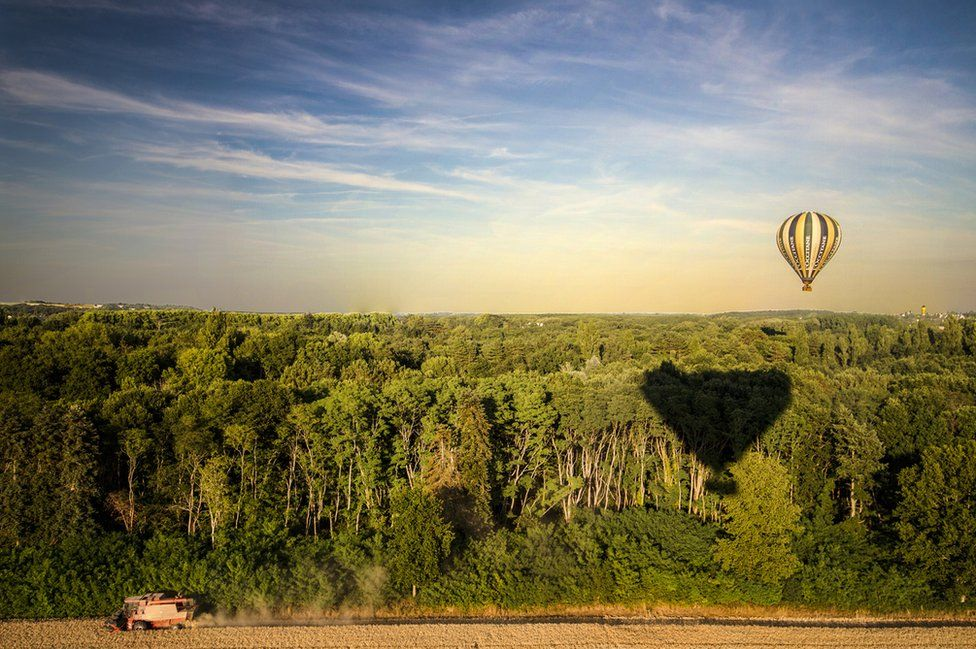 A hot air balloon over the forest