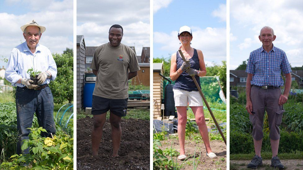 Four of the allotmenteers