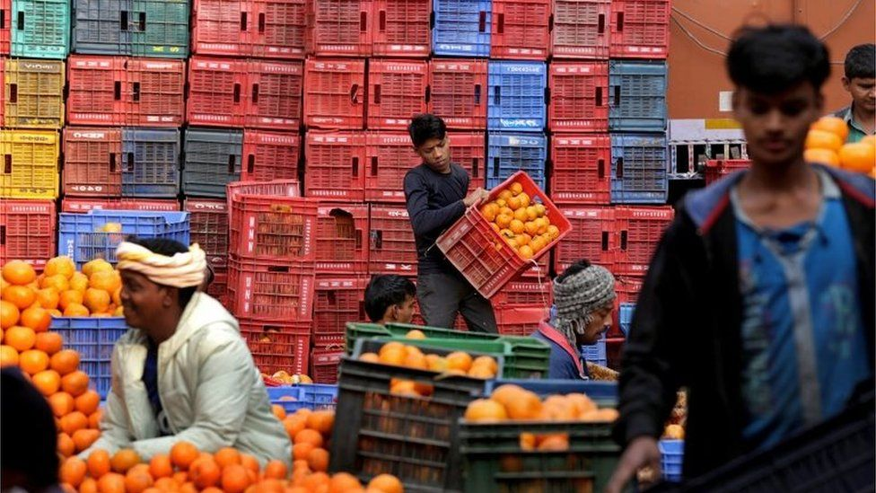 Indian laborers handle oranges at Mechua wholesale fruit market in Calcutta, eastern India, 21 January 2016.