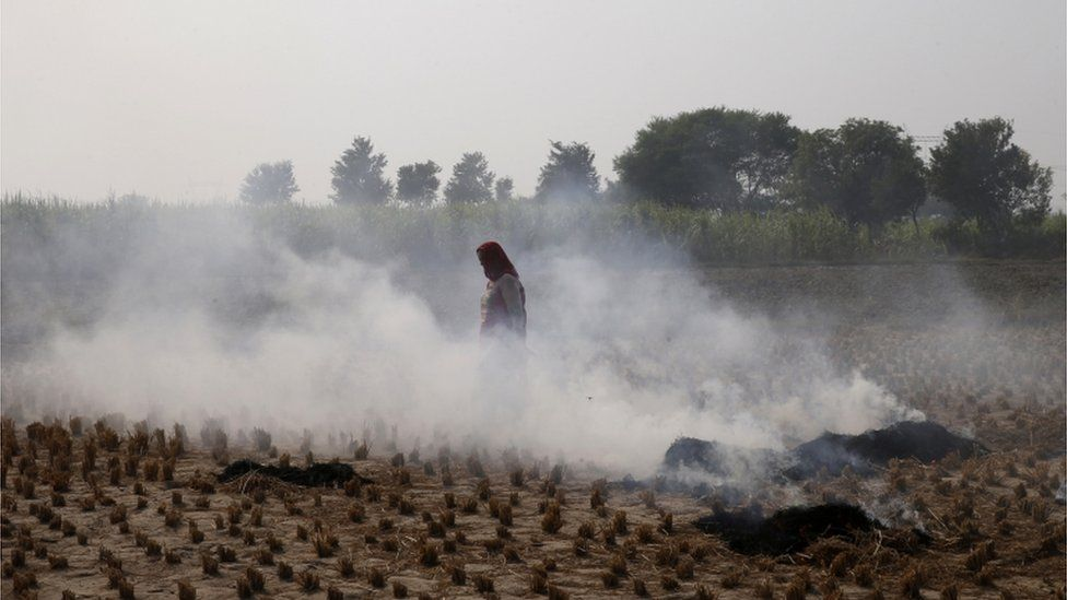 A farmer walks through smoke caused by farming waste set on fire at Palwal, in the state of Haryana, south of New Delhi, India.