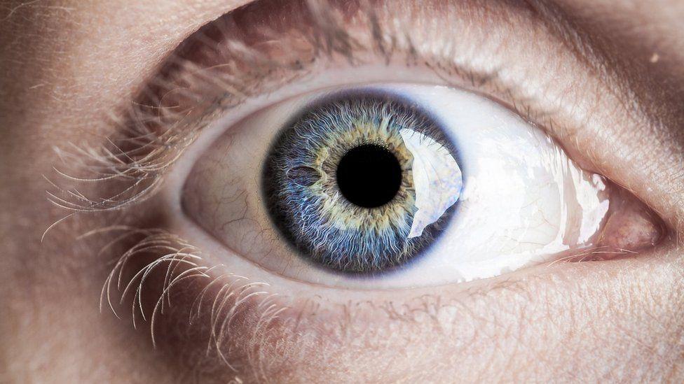 ojo por ojo y el mundo quedará ciego por la diabetes
