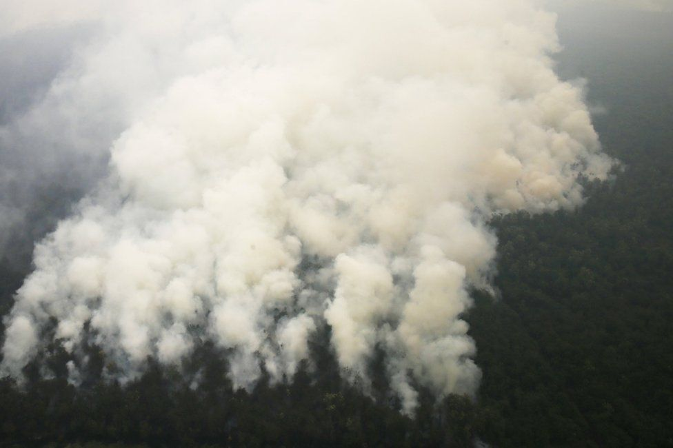 An aerial view of smoke rising from a burning forest at Ogan Komering Ulu area in Indonesia's south Sumatra province September 10, 2015