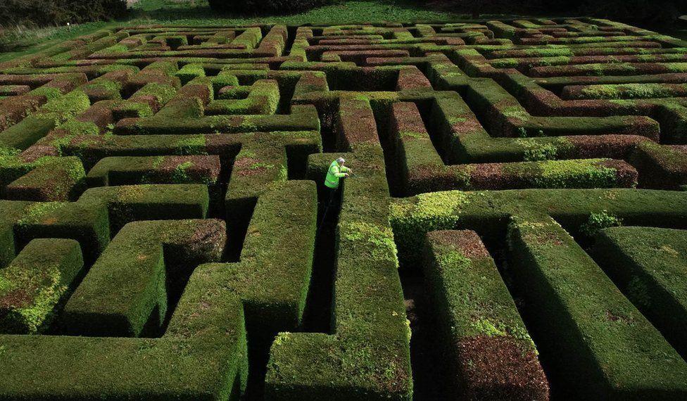 Gardner Eric Drennon trims the maze at Traquair House