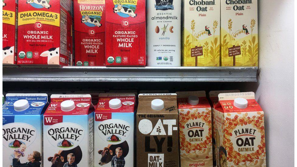 A grocery shelf of milks and milk alternatives