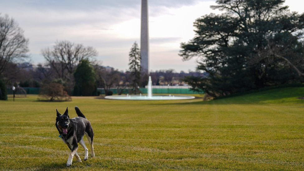Major on the White House lawn