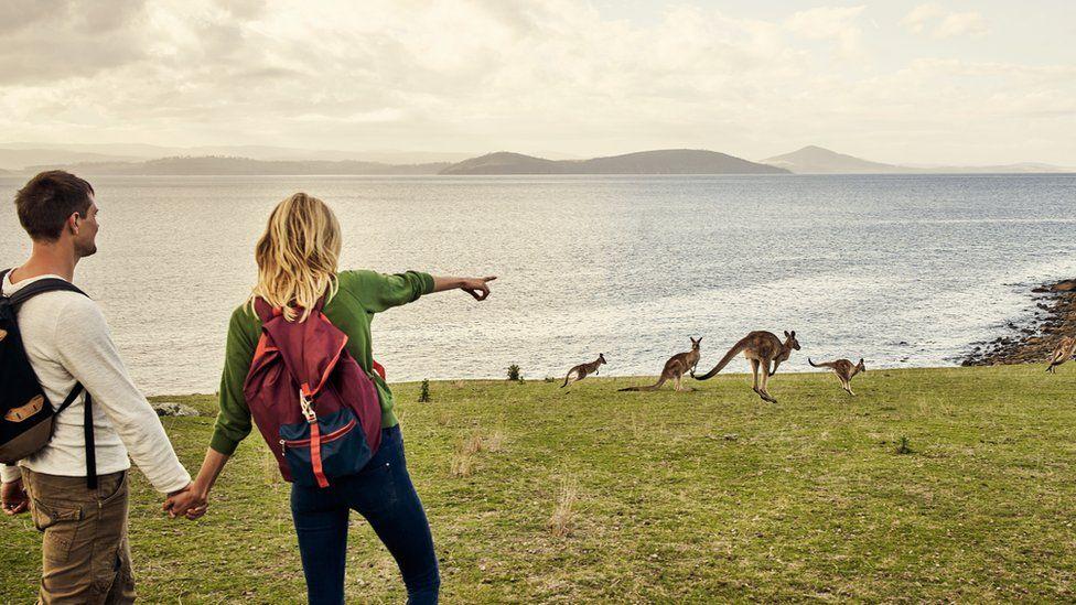 A tourist couple point to kangaroos near water