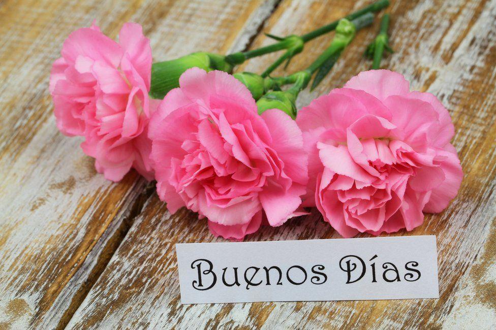 Por qué en español decimos buenoS díaS o buenaS nocheS en plural (y no en singular como las demás lenguas)