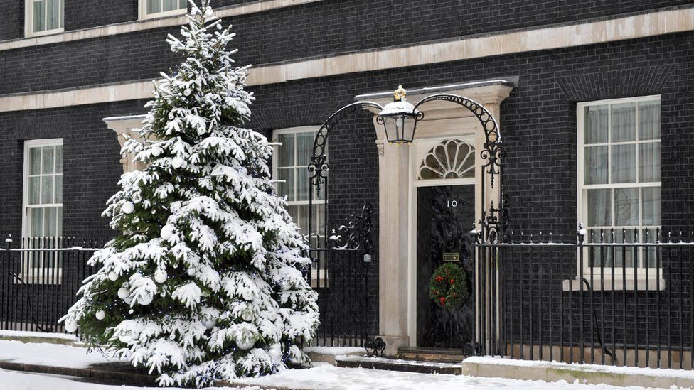 Christmas tree outside 10 Downing Street in the snow