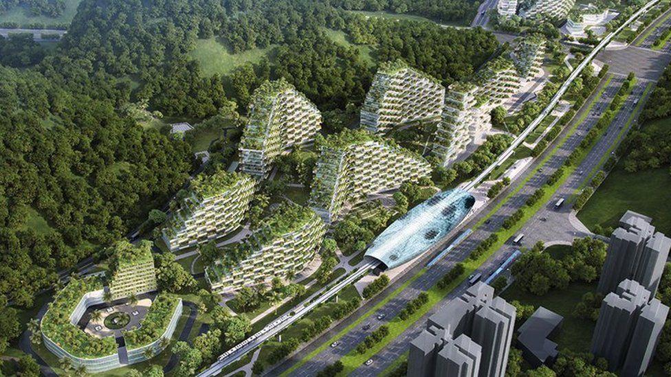 La increíbles imágenes de Liuzhou, la ambiciosa ciudad bosque con la que China quiere enfrentar su crisis de contaminación