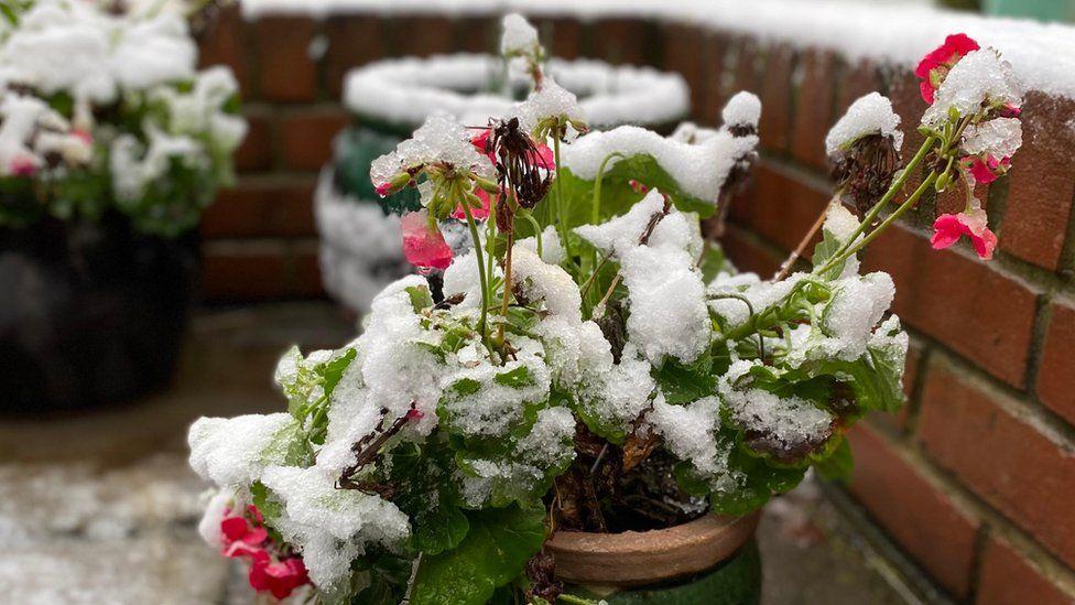 Snow in Ely
