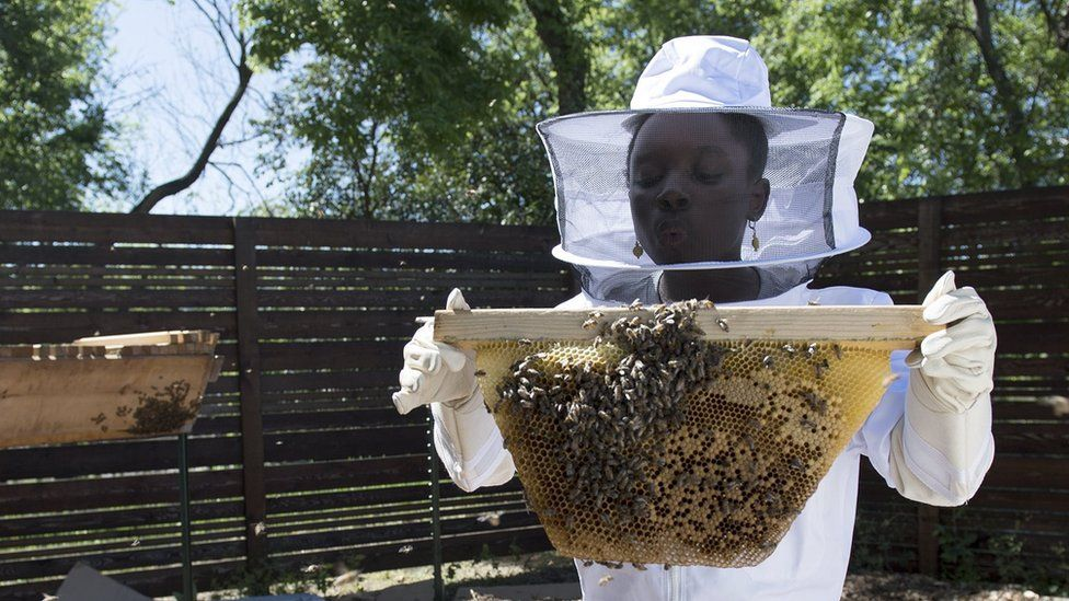 Mikaila Ulmer with some bees
