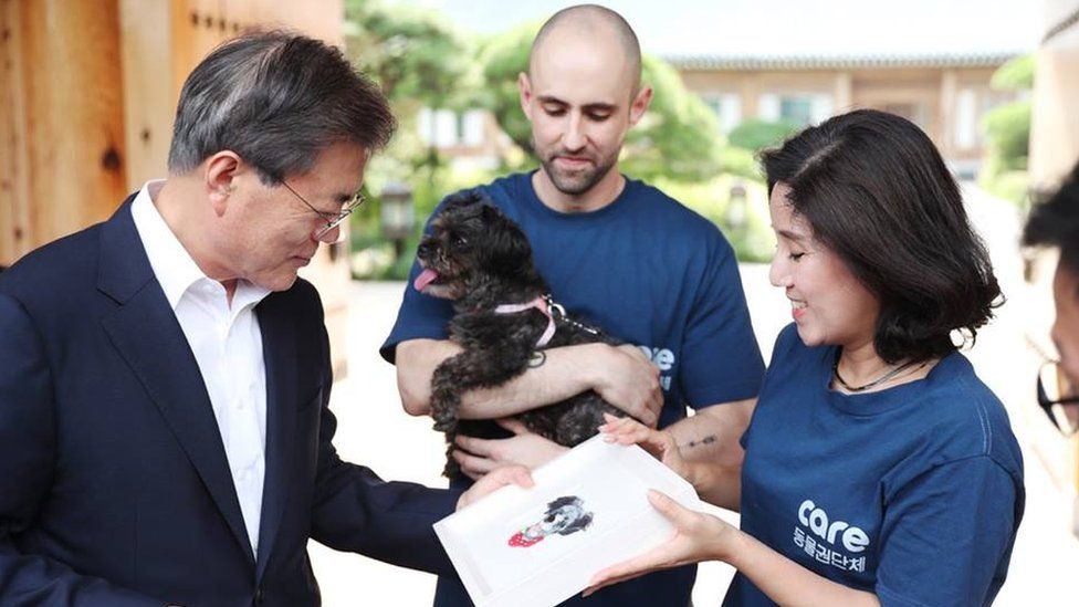 President Moon of South Korea receives his new dog Tory at the CARE animal sanctuary