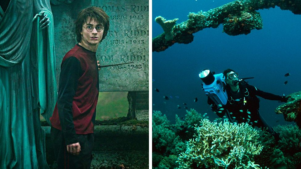 Harry Potter and a Discovery nature documentary